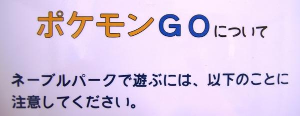 001-w.jpg