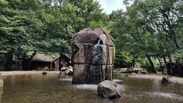 湧く池2.jpg